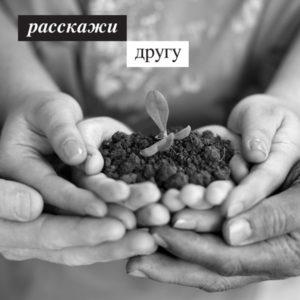 plant-ru.jpg__600x600_q85_crop_upscale